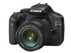 How to get rid of stuck/dead pixels on a Canon DSLR camera